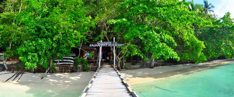 Raja Ampat Dive Resort